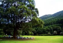 はじめてのキャンパスは森のなか