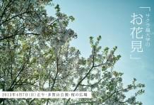 春のお花見でお会いしましょう。